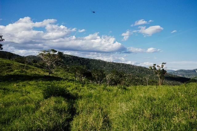 Magnífica fazenda 3.330 tarefas, a 23 km de jequié, br 116 na porta - Foto 12