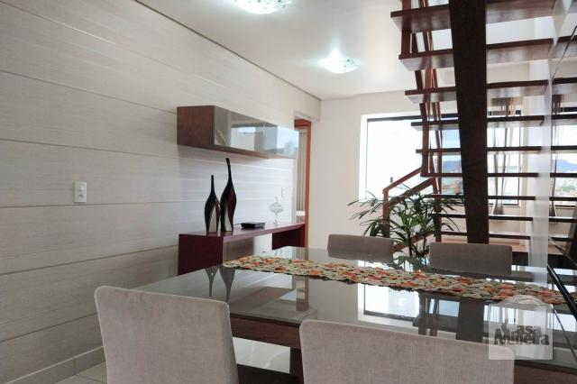 Apartamento à venda com 2 dormitórios em Cinqüentenário, Belo horizonte cod:257701 - Foto 3