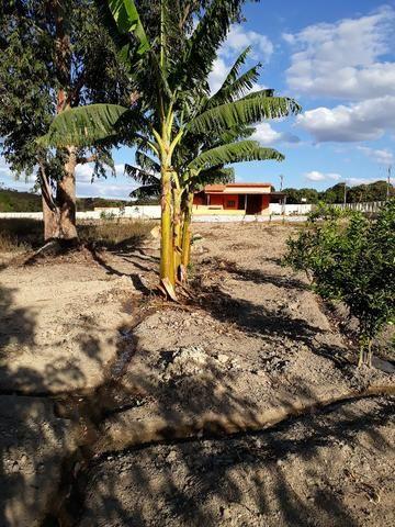 Chácara à venda em Águas Lindas - GO - Foto 9