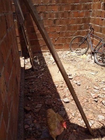 Vendo duas casas em Aguazinha - Foto 5
