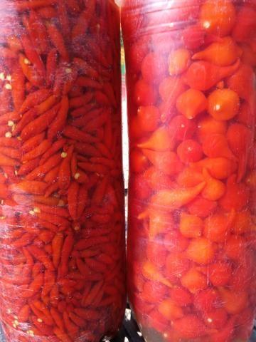 Pimentas - Foto 2