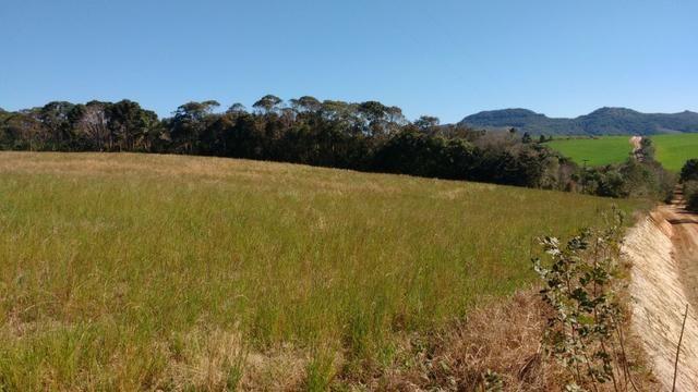 Vendo terreno para chácara ou plantação - Foto 5