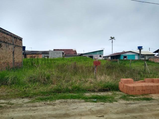 Terreno Praia - Foto 3