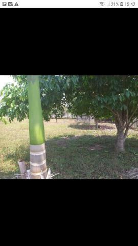 Vendo terreno,na Vila Acre,Ramal da Castanheira,medindo 20x45 - Foto 3