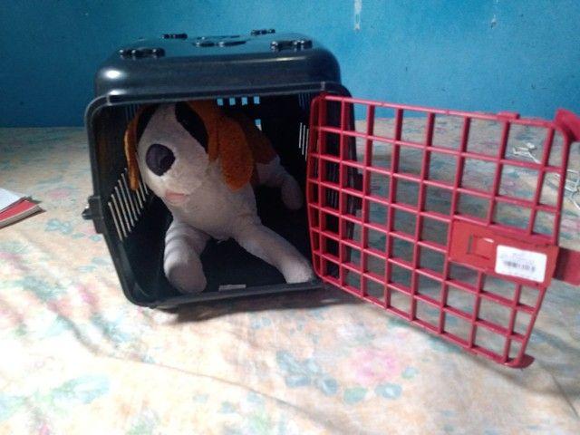 Casinha de Gato e cachorro - Foto 4