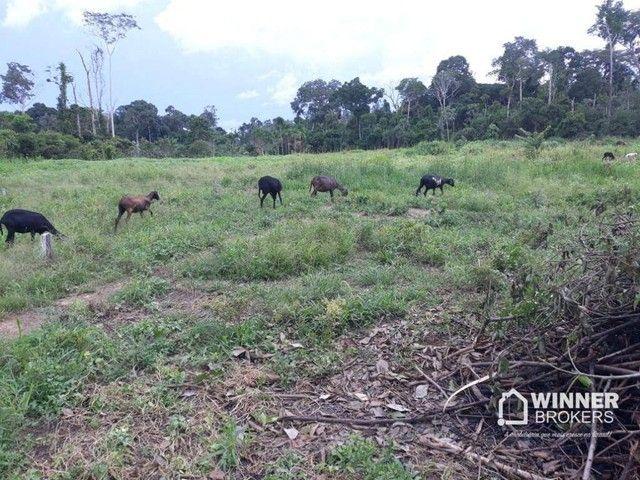 Sítio à venda, 42000 m² por R$ 250.000,00 - Área Rural de Candeias do Jamari - Candeias do - Foto 3