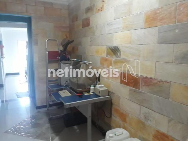 Casa à venda com 3 dormitórios em Alípio de melo, Belo horizonte cod:333011 - Foto 14