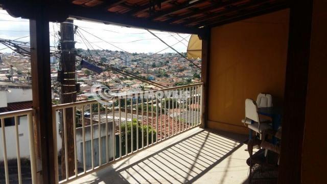 Casa à venda com 3 dormitórios em Glória, Belo horizonte cod:610440 - Foto 14