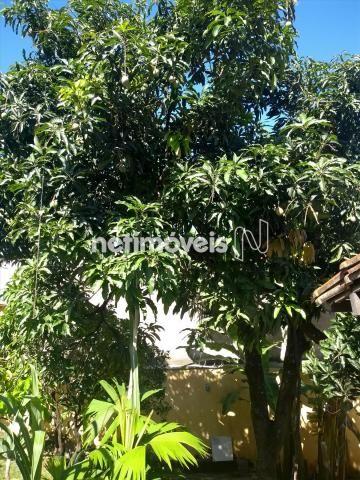 Casa à venda com 3 dormitórios em São salvador, Belo horizonte cod:729459 - Foto 18