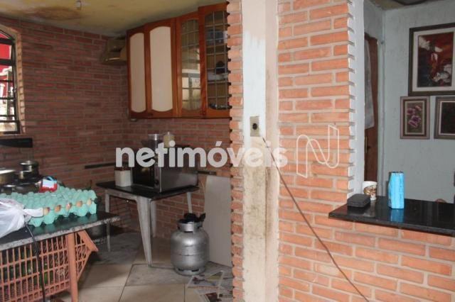 Casa à venda com 3 dormitórios em Serrano, Belo horizonte cod:742242 - Foto 6