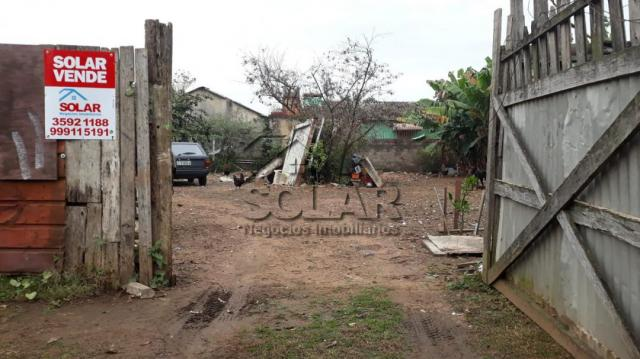 Terreno à venda em Vicentina, São leopoldo cod:2970 - Foto 3