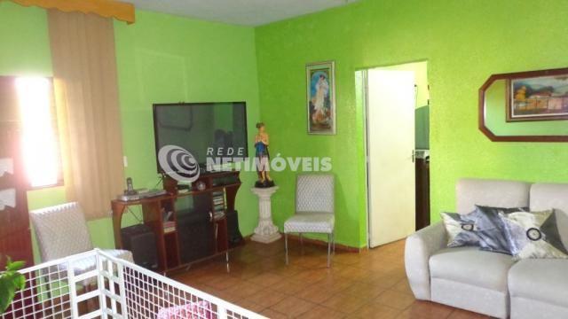Casa à venda com 4 dormitórios em Glória, Belo horizonte cod:474766 - Foto 4