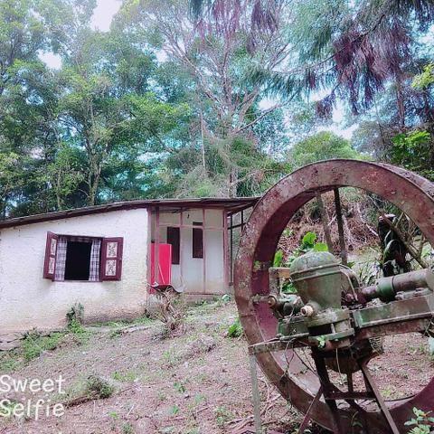 Sítio em Canoas ( pequeno sítio) - Foto 14