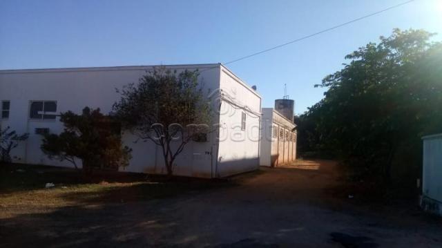 Galpão/depósito/armazém à venda em Distrito industrial, Cedral cod:V8253 - Foto 2