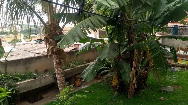 Casa na colônia agrícola samambaia - Foto 8