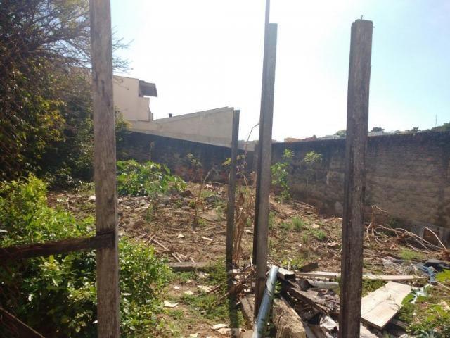 Terreno para alugar com 0 dormitórios em Jardim novo campos elíseos, Campinas cod:TE004486 - Foto 6