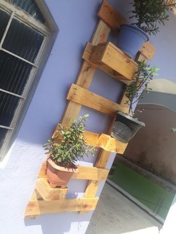 Jardim de plantas - paletes