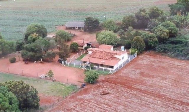 Seu tão sonhado de ter seu investimento rural acabou de chegar para tornar realidade? - Foto 3