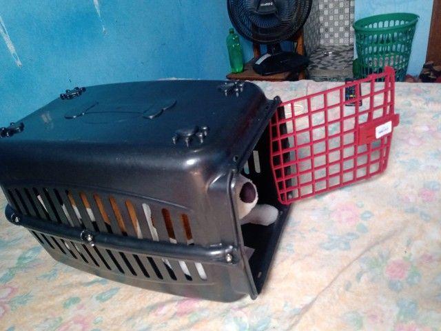Casinha de Gato e cachorro - Foto 5