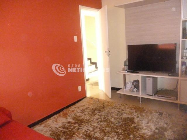 Casa à venda com 3 dormitórios em Alípio de melo, Belo horizonte cod:648049 - Foto 17
