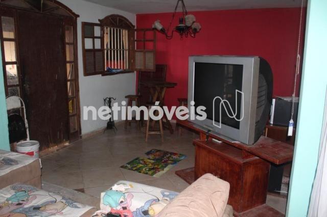 Casa à venda com 3 dormitórios em Serrano, Belo horizonte cod:742242 - Foto 3