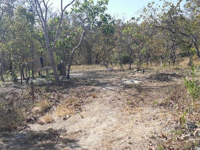 Chácara no pé do morro de Santo Antônio do Leverger - Foto 4