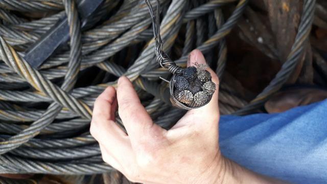 Cordoalha de aço - Foto 5