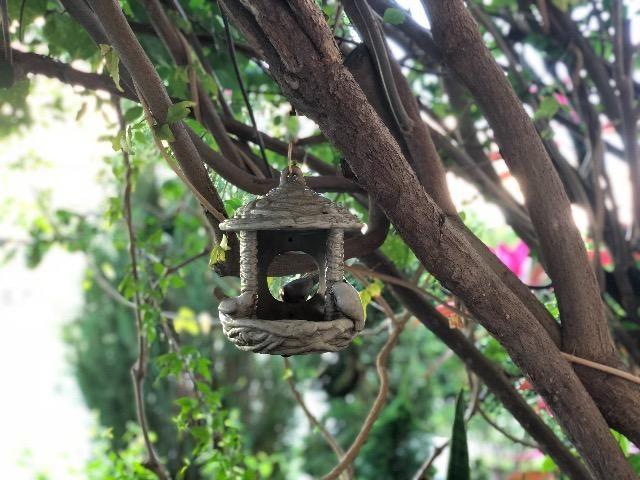 Casa em Stella Maris | 3 quartos + Gabinete | Nascente | Paisagismo - Foto 7