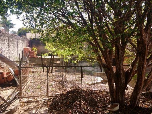 Terreno para alugar com 0 dormitórios em Jardim novo campos elíseos, Campinas cod:TE004486 - Foto 7