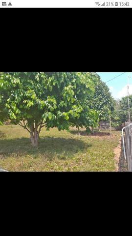 Vendo terreno,na Vila Acre,Ramal da Castanheira,medindo 20x45 - Foto 5