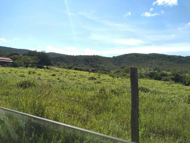 Sitio 41 hect. a 12 km de Unaí - Foto 3