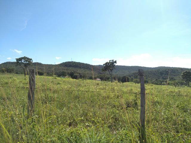 Sitio 41 hect. a 12 km de Unaí - Foto 6