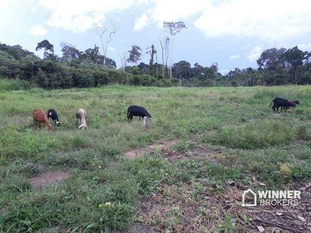 Sítio à venda, 42000 m² por R$ 250.000,00 - Área Rural de Candeias do Jamari - Candeias do - Foto 2