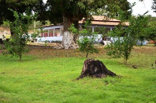 Chácara no Maracanã - Cód.: 1194 - Foto 17