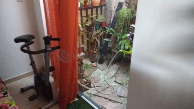 Casa à venda com 3 dormitórios em Serrano, Belo horizonte cod:688884 - Foto 6