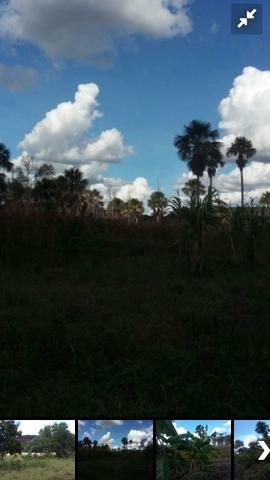 Fazenda bruta em Bom Jesus - PI - Foto 4