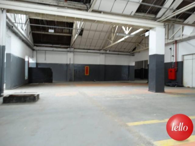 Galpão/depósito/armazém para alugar em Mooca, São paulo cod:187905 - Foto 10
