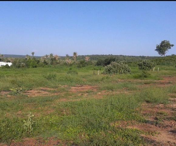 Fazenda Gameleira / 1562 hectares / documentação completa / próximo a Colinas - Foto 8