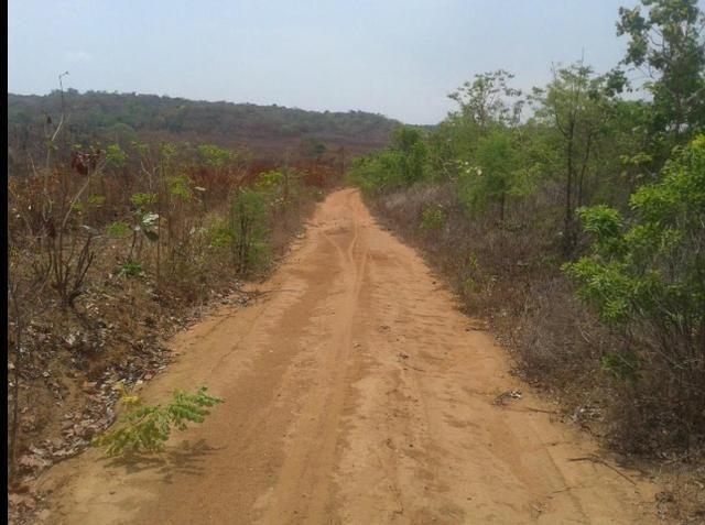 Fazenda Gameleira / 1562 hectares / documentação completa / próximo a Colinas - Foto 7