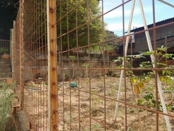 Terreno para alugar com 0 dormitórios em Jardim novo campos elíseos, Campinas cod:TE004486 - Foto 8