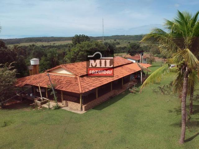 Vende ou troca por terra maior Chácara 5 Alqueires São Miguel do Passa Quatro-GO - Foto 15