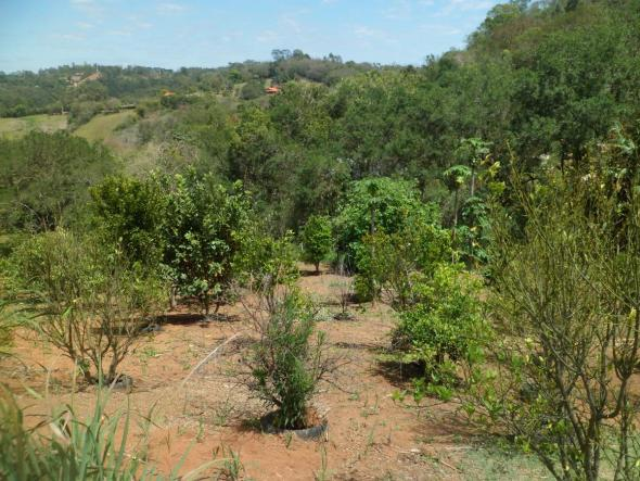 Chácara para Venda em Tuiuti, Cond. Fazenda Vila Nazareth, 2 dormitórios, 2 banheiros - Foto 16