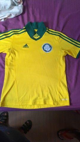 Camisa Palmeiras centenário 2014 - Adidas
