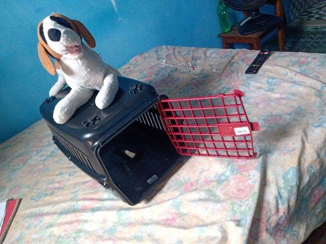 Casinha de Gato e cachorro - Foto 3
