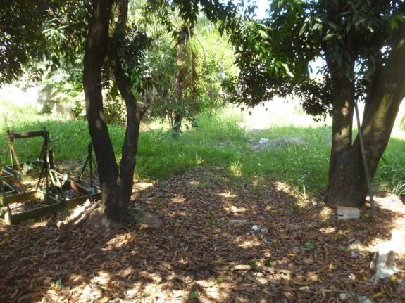 Terreno à venda em Jaqueline, Belo horizonte cod:552201 - Foto 8