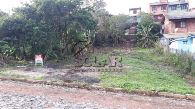 Terreno à venda em Campestre, São leopoldo cod:2959 - Foto 2