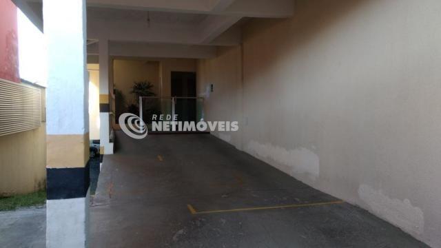Apartamento à venda com 2 dormitórios em Glória, Belo horizonte cod:344218 - Foto 19