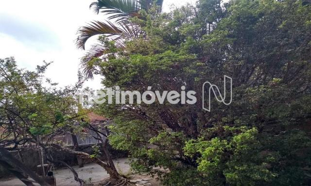 Casa à venda com 3 dormitórios em Jardim filadélfia, Belo horizonte cod:718950 - Foto 5