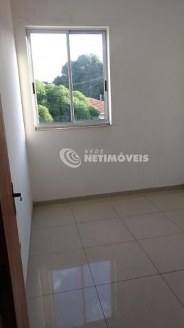Apartamento à venda com 2 dormitórios em Glória, Belo horizonte cod:344218 - Foto 2