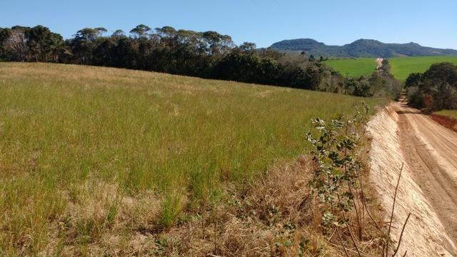 Vendo terreno para chácara ou plantação - Foto 2